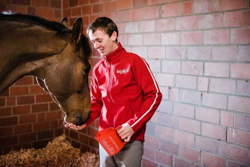 Feeding the older competition horse