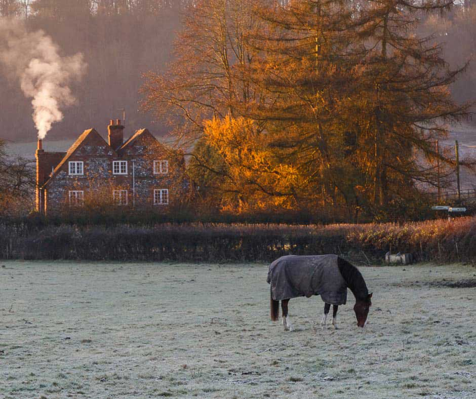 Does frosty grass increase laminitis risk?