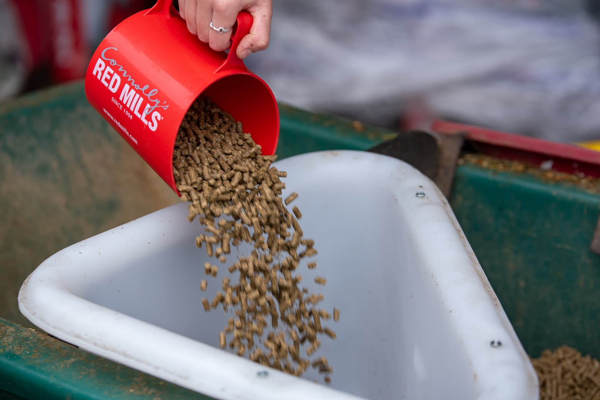 Does your horse need more hard feed this winter?