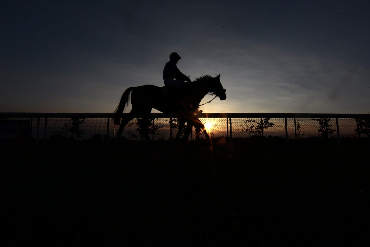 Winter care tips for you, your horse and your yard