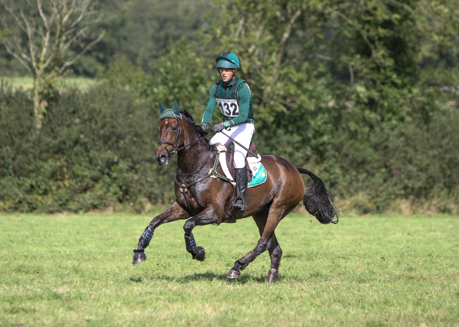 Top Tips to prepare for the AIRC Hunter Trial Championships