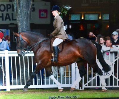 De Kobdashian  & Jodie set for a great week at the Dublin Horse Show