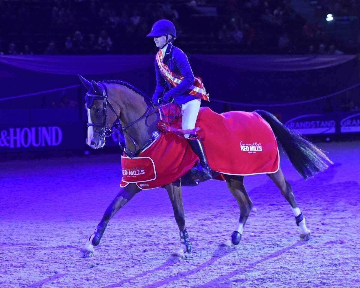 Record breaking HOYS Champion Nicole, hopes for fourth title