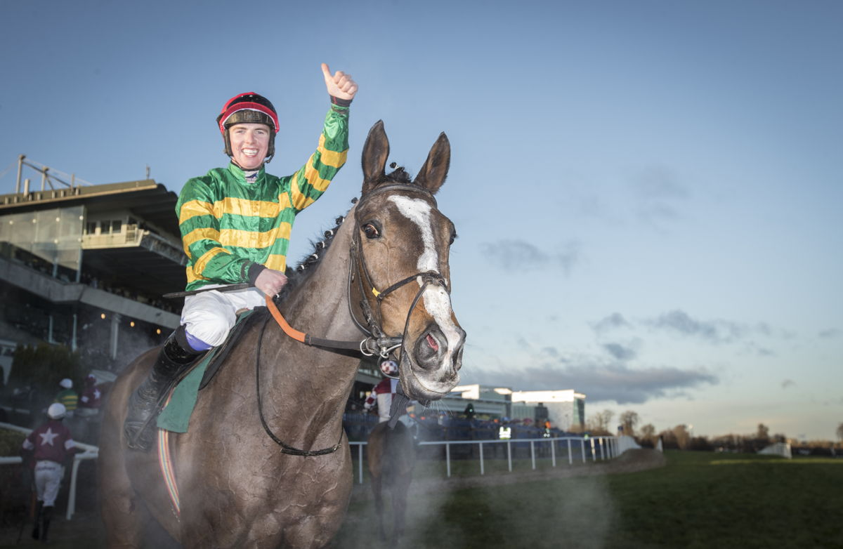 Anibale Fly set for Gowran Park as Martin eyes another Gold Cup bid