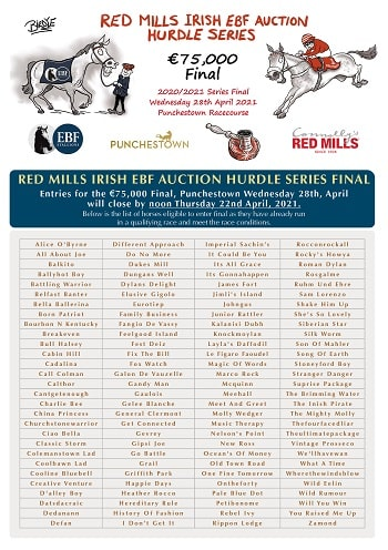 RED MILLS Irish EBF Auction Series Final returns to Punchestown Festival
