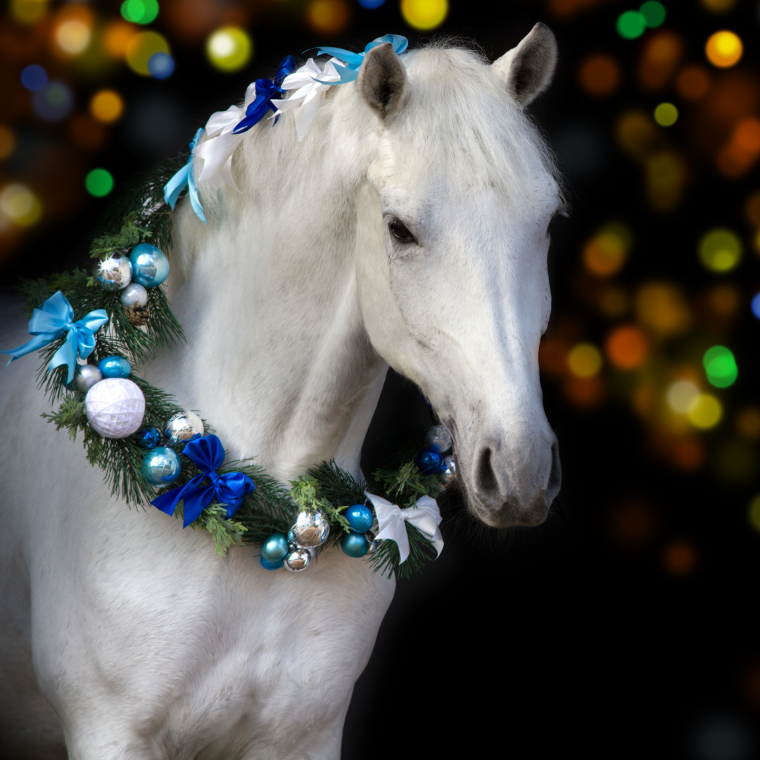 Celebrating Christmas with your horse!