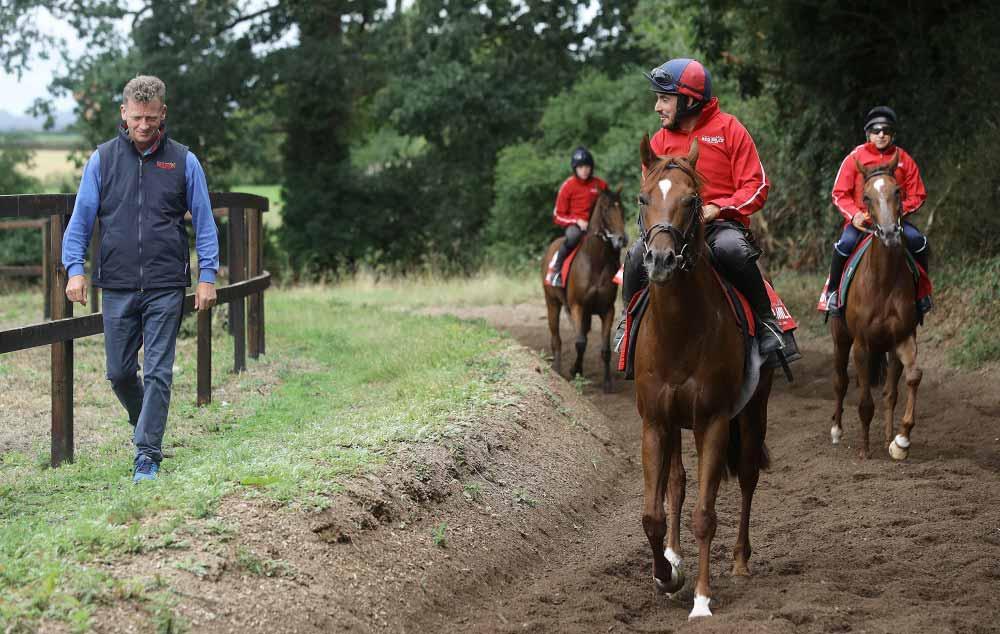 The Trainer-Jockey Relationship