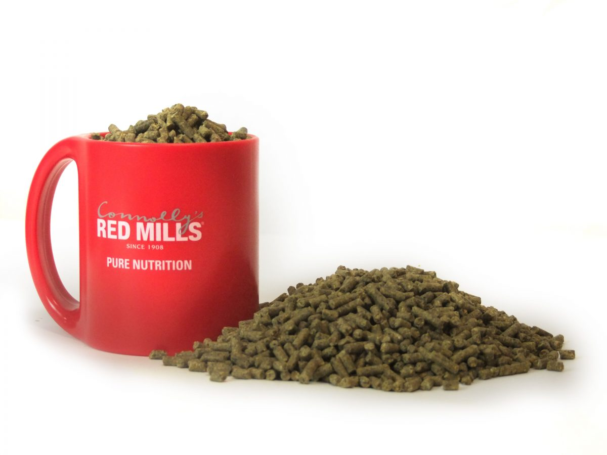 For horses prone to hotting up, what types of feeds can help them keep calm and concentrate?