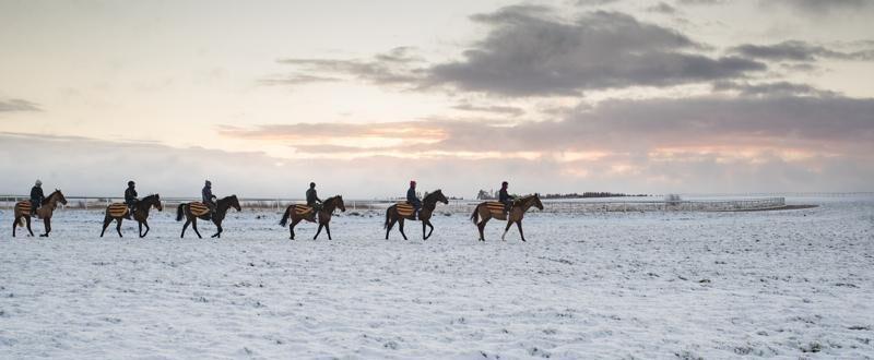 How do I prepare my horse for winter?