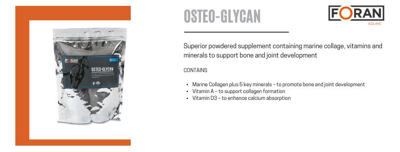 Foran Equine Osteo-Glycan